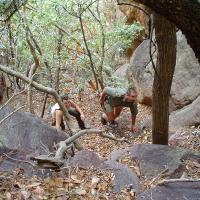 Climbing in the Waterberg, 2003
