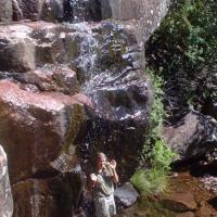 Bush shower, 2005