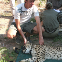 Frederick-and-a-cheetah