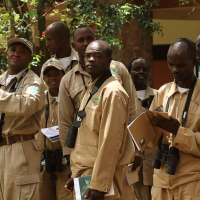 Birding-at-Akagera-in-Rwanda,-2013