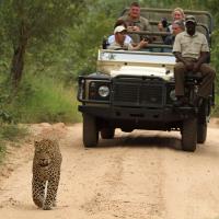 Greg-and-Dan-on-safari,-Ulusaba,-2013